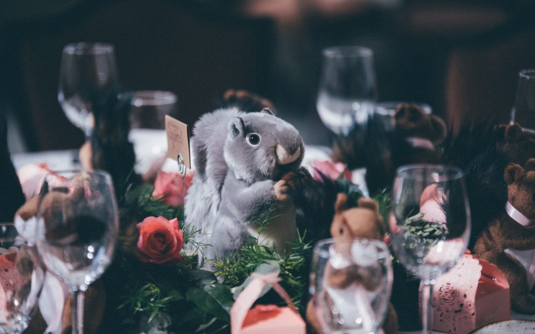 Planning Your Animal Friendly Wedding Ceremony
