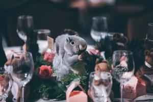 Squirrel at a Scottish wedding